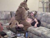 Fucking Big Bad Wolf