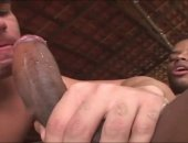 Compilation Of Hot Gay Clips