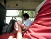 Paja En El Bus