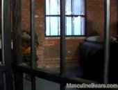 Bears Fuck In Prison