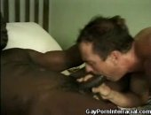 Hto Gays In An In An Interracial Encounter