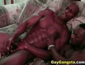 Big Black Muscle Gay Partners