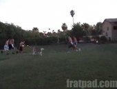 Muscular Studs Playing Football