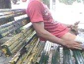 park bench knuckle pump