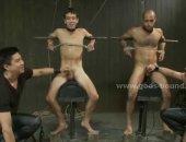 Tied Humiliated Guys