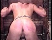 Rookie BDSM