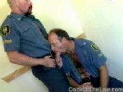 Older Cops In Love