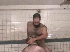 bearded bears fuck in the sauna