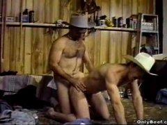 Beef On Barn
