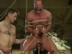 Muscle Humiliation