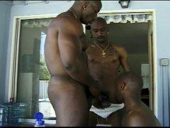 Three Gay Hot