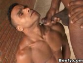 Beefy Gay Stud Got Hurt in Anal Penetration