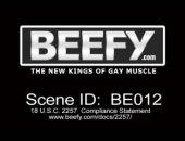 Muscled Gay Men Fucking in Public